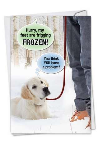 Funny Blank Printed Greeting Card from NobleWorksCards.com - Frozen Problem