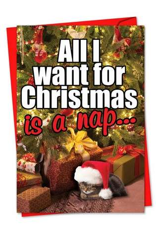 Hysterical Christmas Paper Card from NobleWorksCards.com - Cat Nap