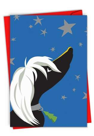 Creative Christmas Printed Greeting Card from NobleWorksCards.com - Xmas Black and White Dog