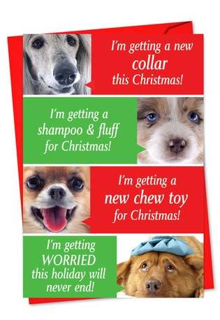 Dogs Getting Worried: Humorous Christmas Greeting Card