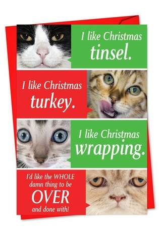 Cats Getting Worried: Funny Christmas Greeting Card