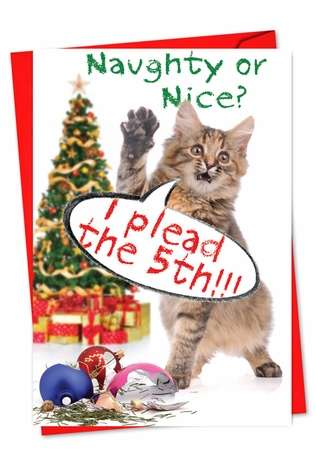 Funny Christmas Printed Greeting Card from NobleWorksCards.com - Take the 5th