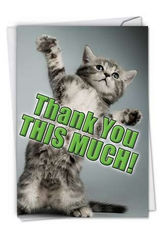 Hilarious Thank You Printed Greeting Card from NobleWorksCards.com - This Much Kitten