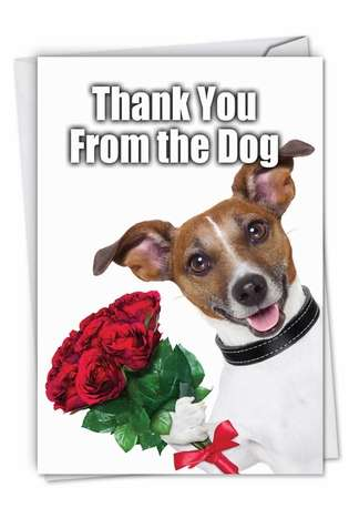 Funny Thank You Printed Card from NobleWorksCards.com - Thank You from the Dog