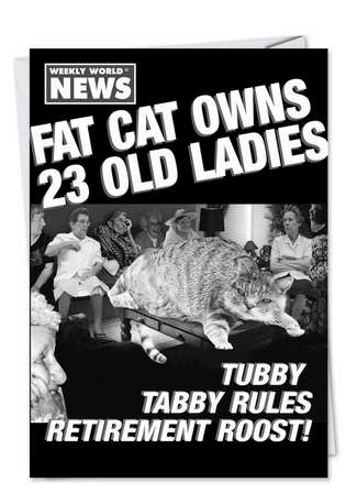 Hilarious Blank Greeting Card by Weekly World News from NobleWorksCards.com - Fat Cat
