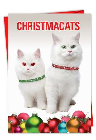Hilarious Christmas Paper Greeting Card from NobleWorksCards.com - Christmacats