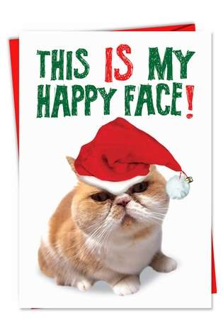 Funny Christmas Greeting Card from NobleWorksCards.com - Happy Face