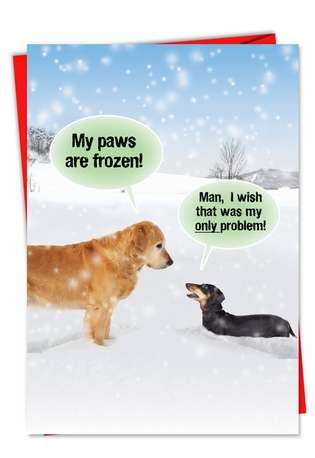 Humorous Christmas Paper Card from NobleWorksCards.com - My Paws Are Frozen