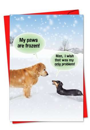 Hilarious Blank Printed Greeting Card from NobleWorksCards.com - My Paws Are Frozen