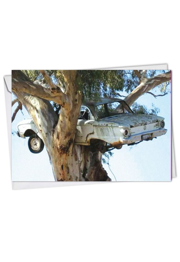 Funny Friendship Printed Greeting Card from NobleWorksCards.com - Hang In There Car Tree