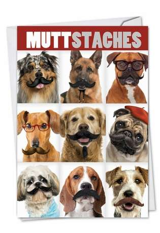 Humorous Birthday Printed Greeting Card from NobleWorksCards.com - Muttstaches