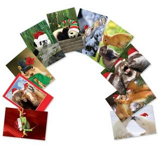 Creative Christmas Printed Greeting Card from NobleWorksCards.com - Christmas Creatures