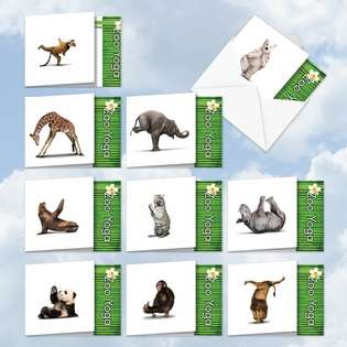 Creative All Occasions Printed Greeting Card by Willow Creek Press from NobleWorksCards.com - Zoo Yoga