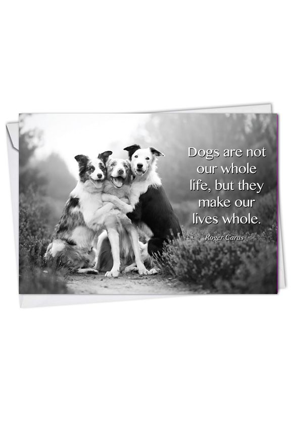 Creative Blank Printed Card from NobleWorksCards.com - Canine Comments