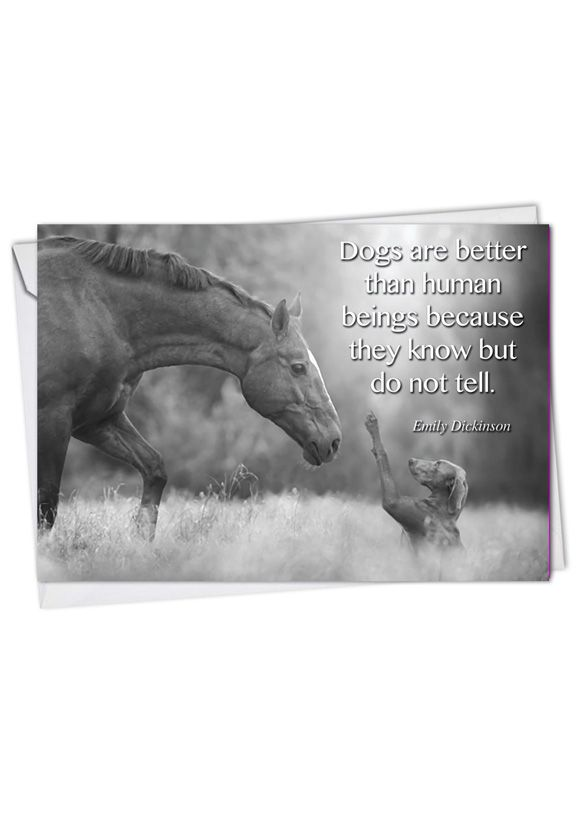 Stylish Blank Paper Greeting Card from NobleWorksCards.com - Canine Comments
