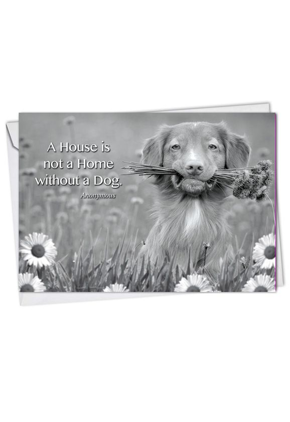 Stylish Blank Paper Card from NobleWorksCards.com - Canine Comments