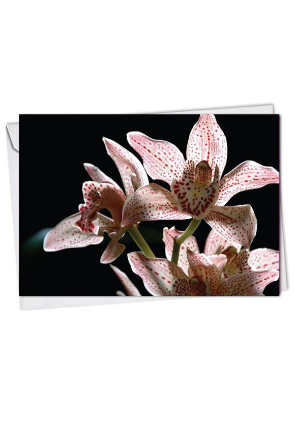 Creative Get Well Greeting Card from NobleWorksCards.com - Orchid Nights