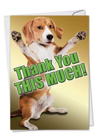 Humorous Thank You Printed Greeting Card from NobleWorksCards.com - This Much Dog