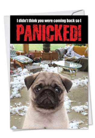 Hilarious Birthday Printed Card from NobleWorksCards.com - Dog Panicked