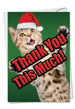 Stylish Christmas Thank You Printed Greeting Card from NobleWorksCards.com - Cat Big Thanks