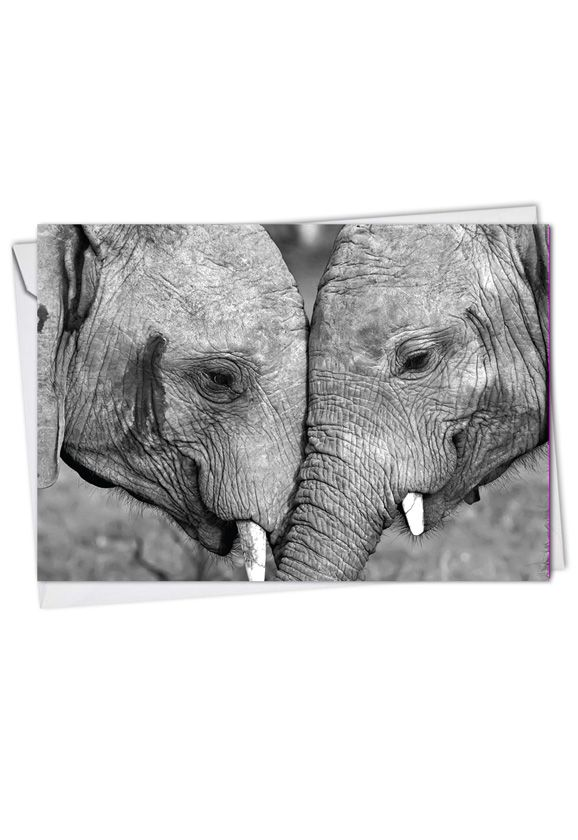 Stylish Anniversary Printed Greeting Card from NobleWorksCards.com - Trunks Of Love