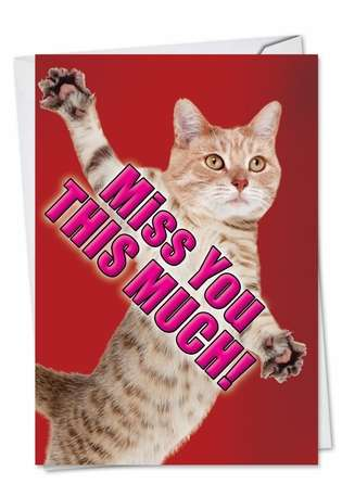 Hilarious Miss You Greeting Card from NobleWorksCards.com - Miss You This Much-Cat