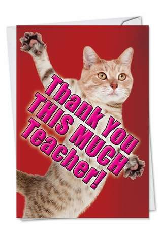 Hilarious Teacher Thank You Printed Card from NobleWorksCards.com - Thank You This Much Teacher-Cat