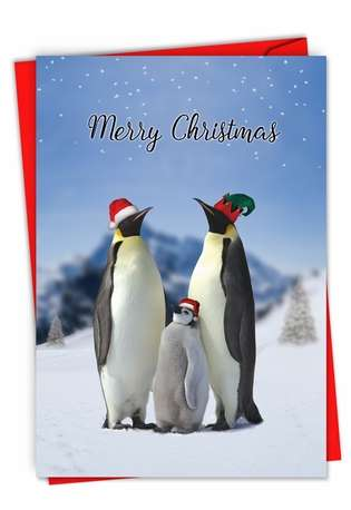 Hysterical Merry Christmas Printed Greeting Card From NobleWorksCards.com - Penguins and Greetings Christmas