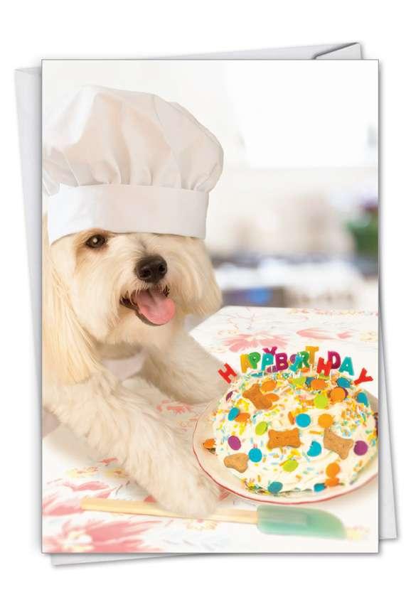 Dog Chef: Hysterical Birthday Printed Card