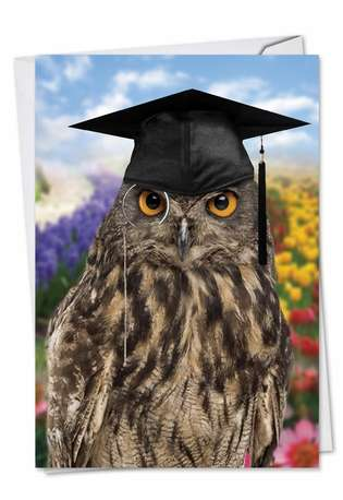 Funny Graduation Printed Greeting Card from NobleWorksCards.com - Wise Old Owl