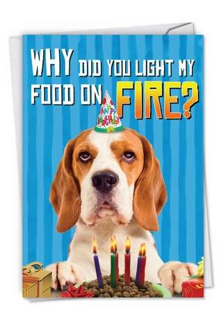 Funny Birthday Pet Printed Greeting Card from NobleWorksCards.com - Food On Fire