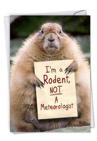 Hysterical Groundhog Day Printed Greeting Card from NobleWorksCards.com - I'm A Rodent