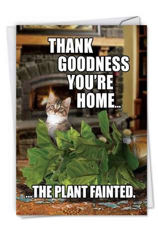 Humorous Birthday Printed Card from NobleWorksCards.com - Plant Fainted-Cat