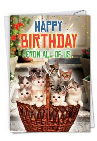 Funny Birthday Greeting Card from NobleWorksCards.com - From All Us Cats