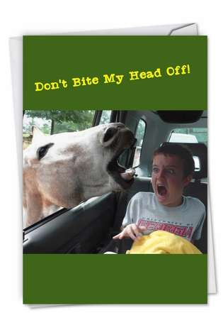 Hilarious Birthday Printed Card by Awkward Family Photos from NobleWorksCards.com - Horse Mouth