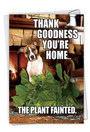 Hilarious Birthday Paper Greeting Card from NobleWorksCards.com - Plant Fainted-Dog