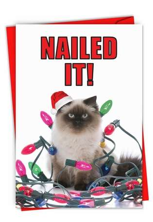 Hilarious Merry Christmas Printed Card From NobleWorksCards.com - Nailed It