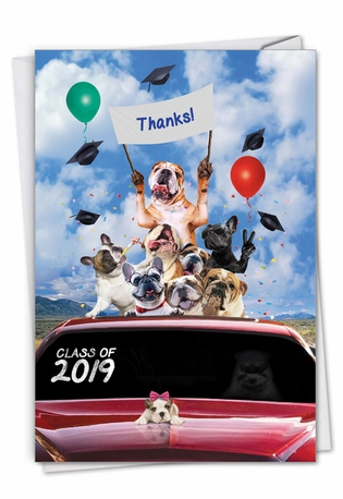Stylish Graduation Thank You Paper Card From NobleWorksCards.com - Bulldog Mascot - 2019