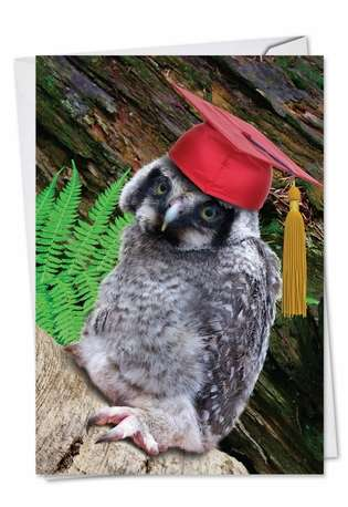 Stylish Graduation Paper Greeting Card from NobleWorksCards.com - Capped Creatures