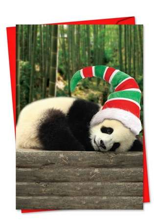 Creative Christmas Paper Greeting Card from NobleWorksCards.com - Holiday Pooped Pandas