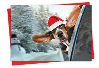 Creative Christmas Greeting Card from NobleWorksCards.com - Holiday Doggie in the Window