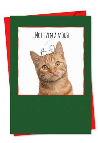 Creative Christmas Printed Card from NobleWorksCards.com - Cats & Doodles
