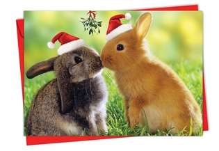 Stylish Christmas Printed Greeting Card from NobleWorksCards.com - Holiday Animal Smackers