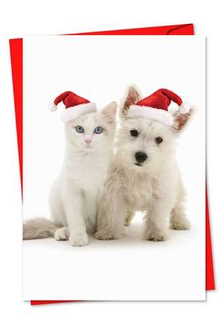 Creative Christmas Paper Greeting Card by Warren Photographic from NobleWorksCards.com - Copy Cats