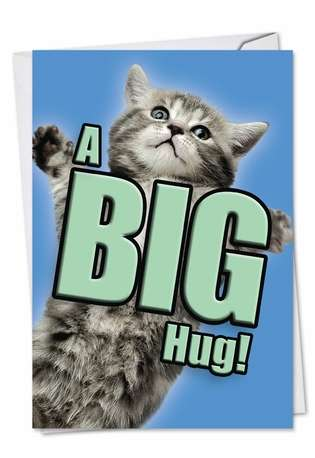 Creative Get Well Paper Card from NobleWorksCards.com - Cat A Big Hug