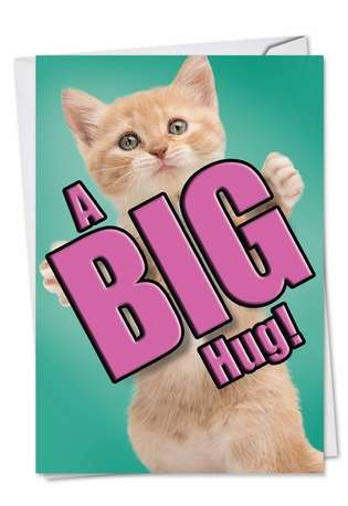 Stylish Miss You Greeting Card from NobleWorksCards.com - Cat A Big Hug
