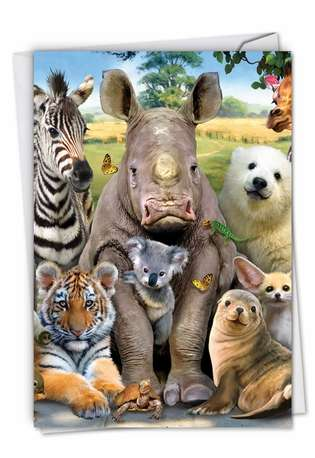 Stylish Get Well Card By Robinson, Howard From NobleWorksCards.com - Here's Looking At Zoo