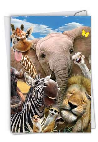 Creative Birthday Greeting Card By Robinson, Howard From NobleWorksCards.com - Here's Looking At Zoo
