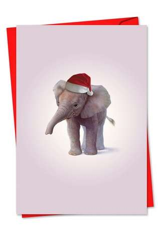 Stylish Christmas Printed Greeting Card by John Butler from NobleWorksCards.com - Zoo Babies