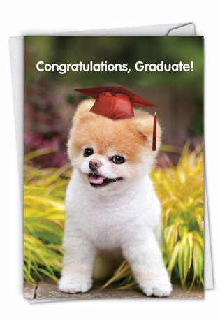 Humorous Graduation Paper Card By Spotlight Licensing From NobleWorksCards.com - Boo-tiful Future